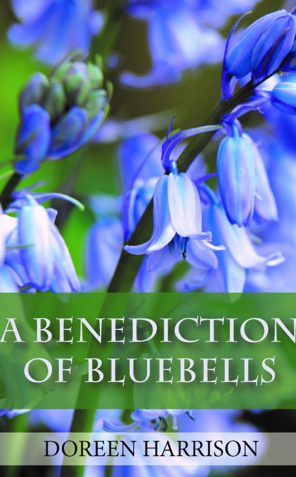 A Benediction of Bluebells